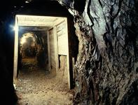 Reed Gold Mine