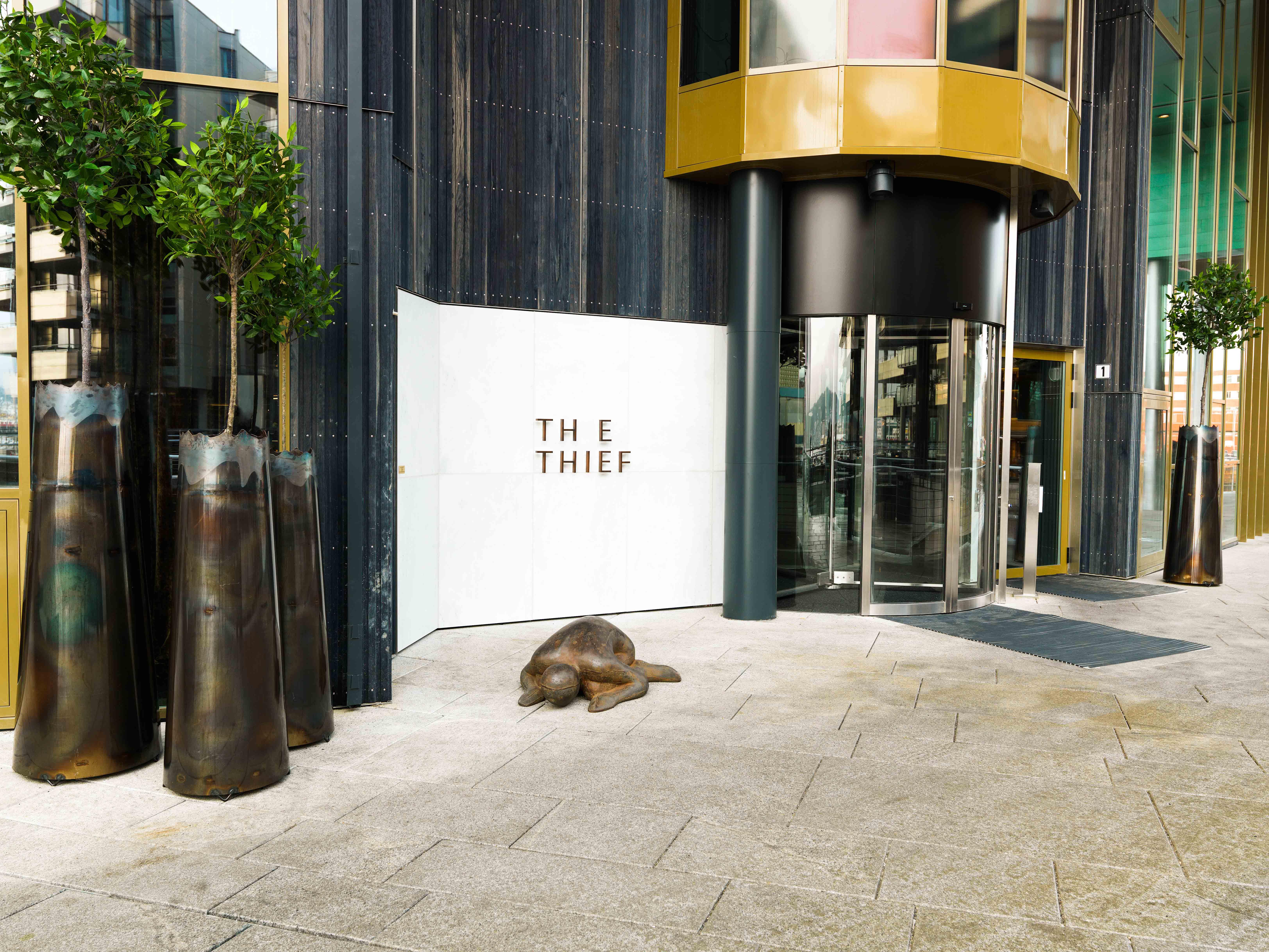 The Thief Hotel