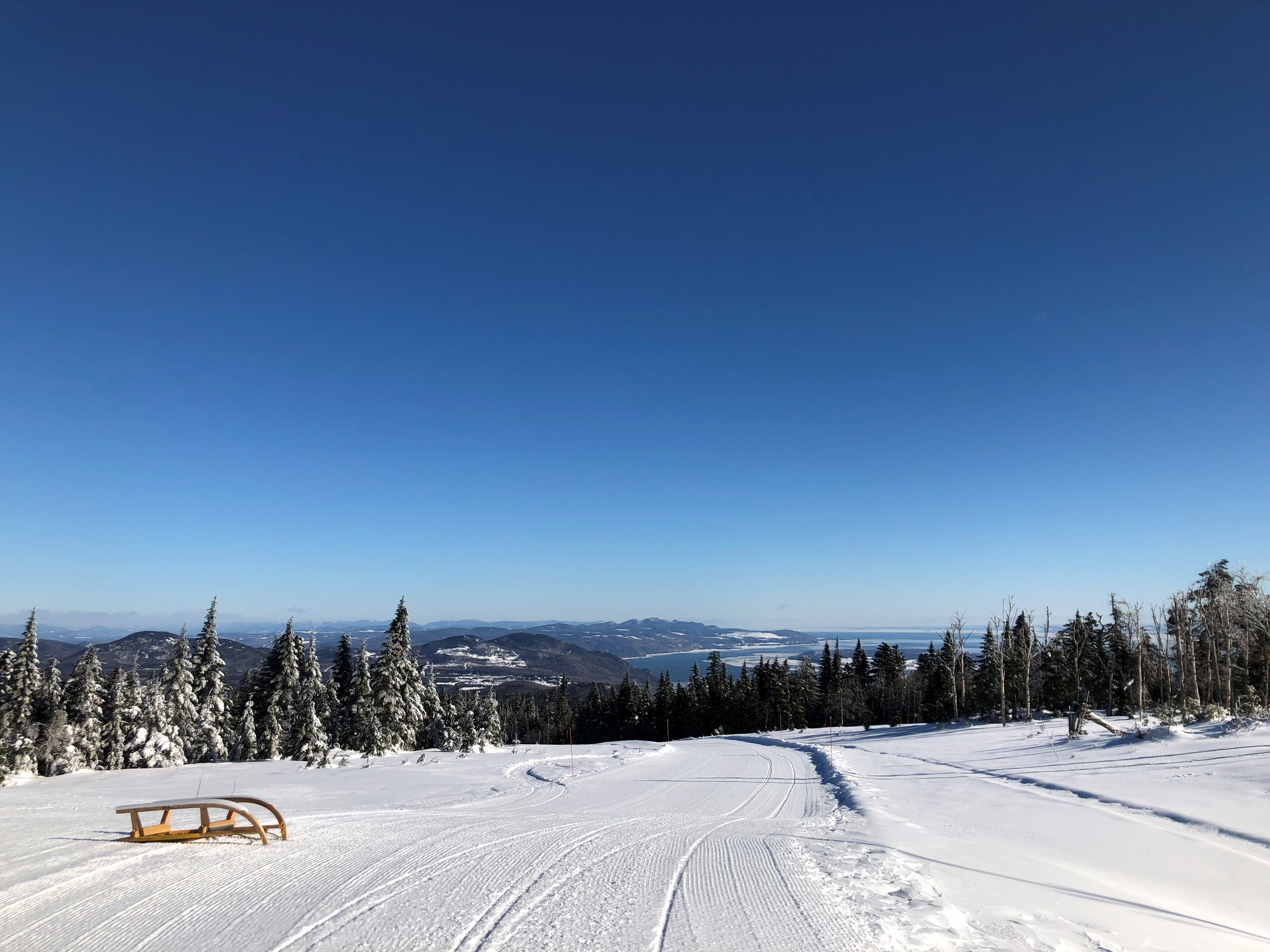 sledding, le massif, quebec, charlevoix