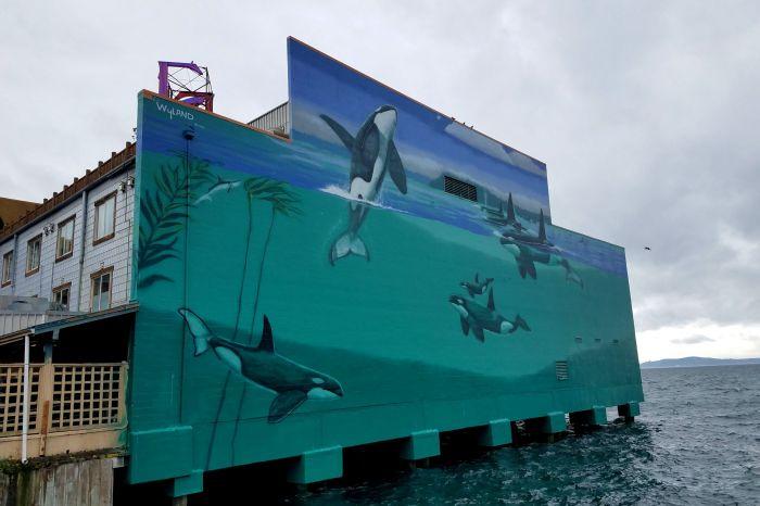 wyland mural edgewater