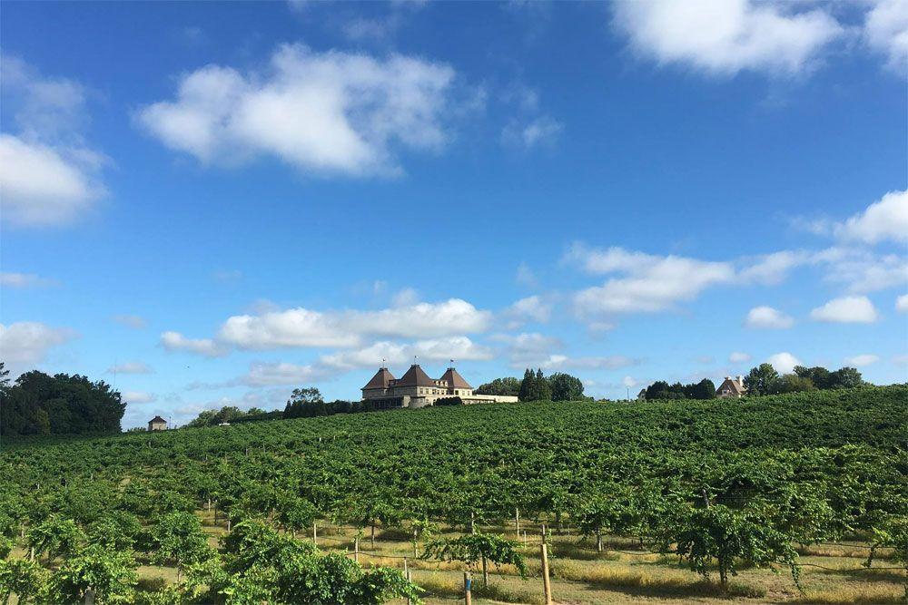 Chateau Elan Winery Tours