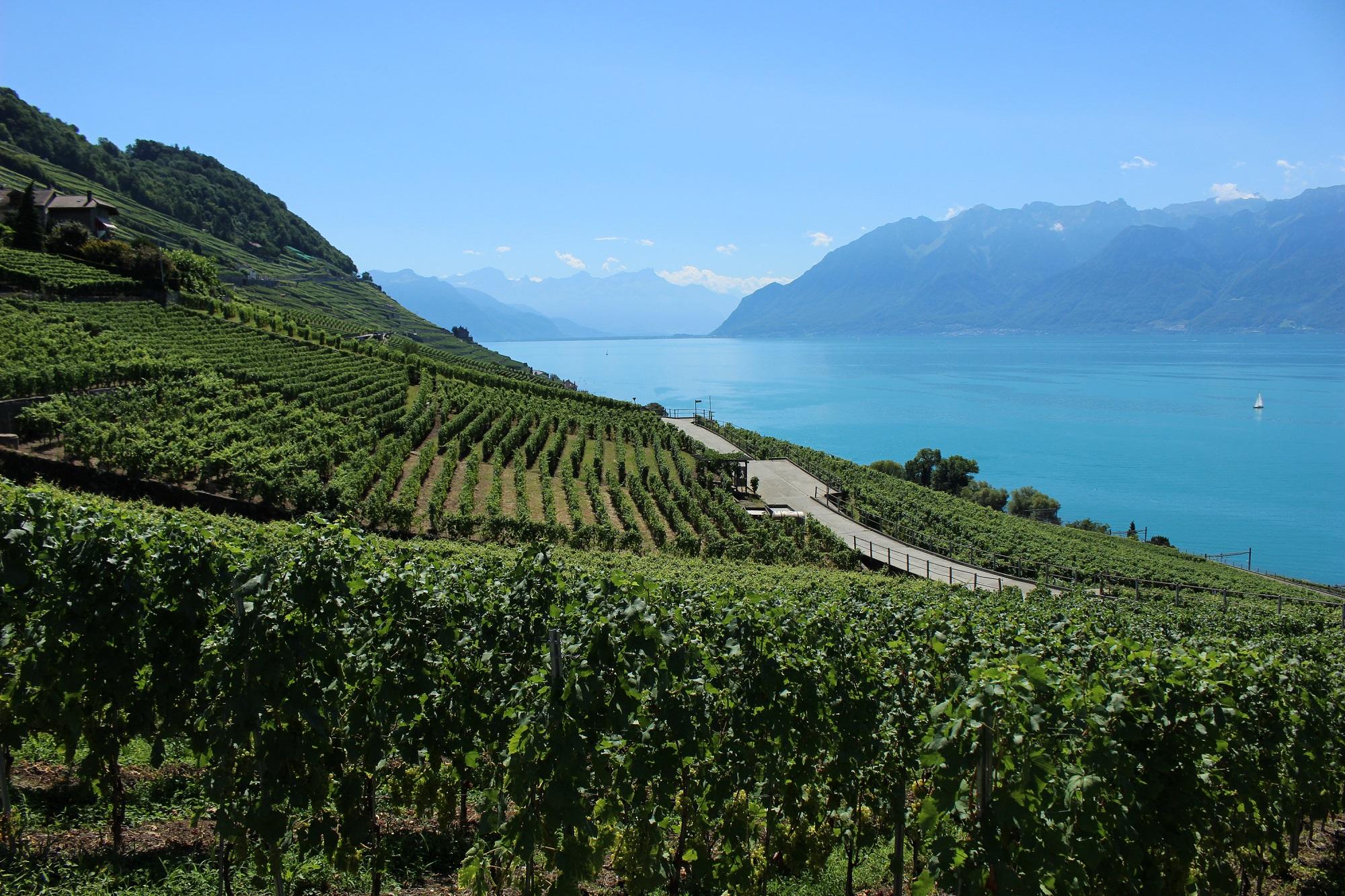 Canton of Vaud