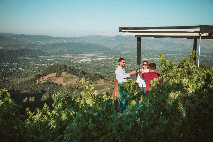 Napa's Newton Vineyard Celebrates Four Decades of Excellence