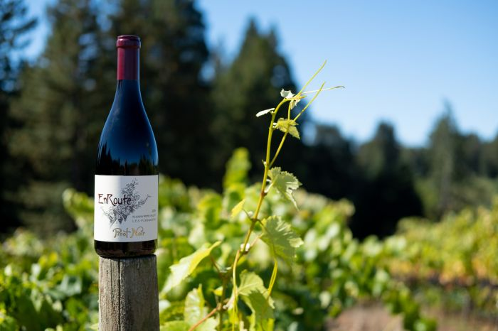 Father's Day Wine Picks for the Gifting Win